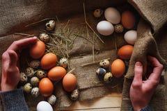 Ovos em um fundo branco Imagem de Stock