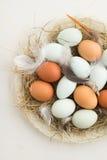 Ovos em um ninho fotos de stock
