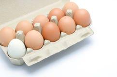 Ovos em um pacote da caixa Fotografia de Stock Royalty Free