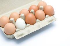 Ovos em um pacote da caixa Foto de Stock Royalty Free