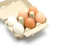 Ovos em um pacote da caixa Fotos de Stock Royalty Free