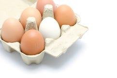 Ovos em um pacote da caixa Fotografia de Stock