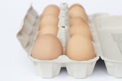 Ovos em um pacote em um fundo branco Imagens de Stock