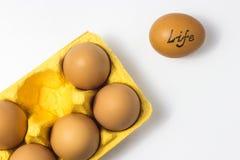 Ovos em um pacote em um fundo branco Fotografia de Stock Royalty Free
