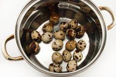ovos em um saucepan imagem de stock