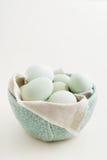 Ovos em uma bacia fotos de stock royalty free