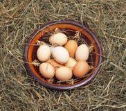 Ovos em uma bacia no feno Imagem de Stock
