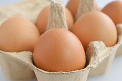 Ovos em uma caixa da caixa Fotos de Stock Royalty Free