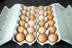 Ovos em uma caixa de ovo fotografia de stock