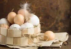 Ovos em uma cesta Vista superior dos ovos na bacia Ovos de Brown na bacia de madeira Ovo da galinha Cesta dos ovos de galinha Fotografia de Stock Royalty Free