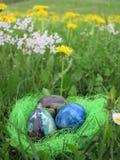 Ovos em uma grama verde Fotos de Stock Royalty Free