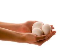 Ovos em uma mão foto de stock