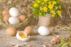 Ovos em uma tabela de madeira Fotos de Stock Royalty Free