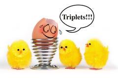 Ovos engraçados Foto de Stock Royalty Free