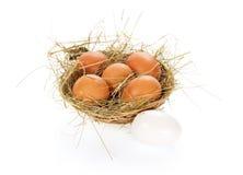Ovos, feno em uma cesta da fibra Fotografia de Stock Royalty Free
