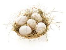 Ovos, feno em uma cesta da fibra Fotos de Stock