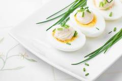 Ovos fervidos com maionese Imagem de Stock Royalty Free
