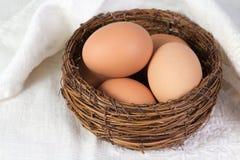 Ovos fervidos da galinha Fotografia de Stock Royalty Free