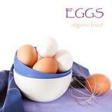 Ovos frescos. fotografia de stock