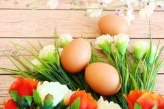Ovos frescos fotografia de stock