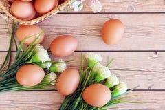 Ovos frescos imagens de stock
