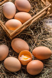 Ovos frescos da exploração agrícola Fotografia de Stock