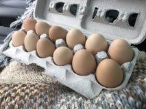 Ovos frescos da exploração agrícola fotografia de stock royalty free