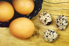 Ovos frescos da galinha e das codorniz Fotos de Stock