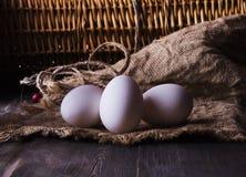 Ovos frescos da galinha em uma prateleira de madeira imagens de stock royalty free