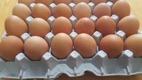 Ovos frescos da galinha da exploração agrícola em um suporte da ovo-caixa ou do ovo colocado no mercado para a venda imagem de stock royalty free