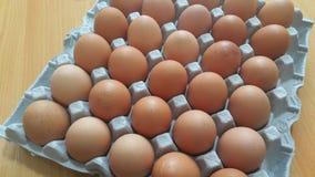 Ovos frescos da galinha da exploração agrícola em um suporte da ovo-caixa ou do ovo colocado no mercado para a venda imagens de stock