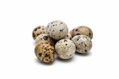 Ovos frescos das codorniz. foto de stock