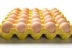 Ovos frescos em um pacote de papel Imagem de Stock Royalty Free