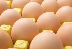 Ovos frescos em um pacote de papel Foto de Stock Royalty Free
