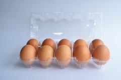 Ovos frescos em um pacote plástico Foto de Stock