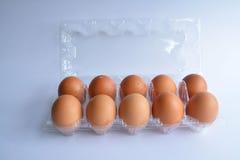 Ovos frescos em um pacote plástico Fotografia de Stock Royalty Free