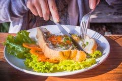 Ovos fritados e pão Imagem de Stock