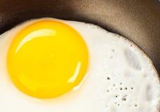 Ovos fritados perto acima Imagem de Stock Royalty Free