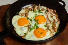Ovos fritos em uma frigideira com becon Ovos fritos com bacon em uma bandeja temperado com ervas e pimenta Fotografia de Stock