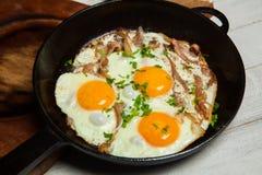 Ovos fritos em uma frigideira com becon Ovos fritos com bacon em uma bandeja temperado com ervas e pimenta Imagens de Stock
