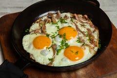 Ovos fritos em uma frigideira com becon Ovos fritos com bacon em uma bandeja temperado com ervas e pimenta Imagem de Stock Royalty Free