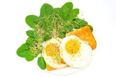 Ovos fritos no brinde e nos espinafres foto de stock royalty free