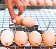 Ovos grelhados no escudo Fotografia de Stock Royalty Free