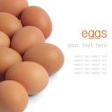 Ovos isolados imagem de stock royalty free