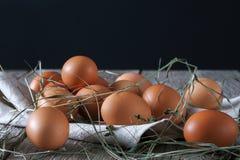 Ovos marrons da galinha fresca na madeira rústica, conceito do cultivo orgânico Imagens de Stock Royalty Free
