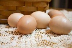 Ovos marrons frescos Imagem de Stock Royalty Free
