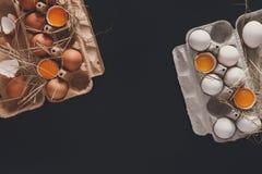 Ovos marrons frescos na caixa no fundo preto Fotos de Stock