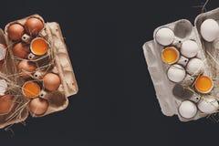 Ovos marrons frescos na caixa no fundo preto Foto de Stock Royalty Free