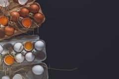Ovos marrons frescos na caixa no fundo preto Imagem de Stock Royalty Free