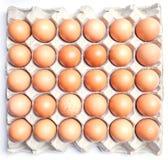 Ovos marrons frescos no cartão no fundo branco foto de stock royalty free